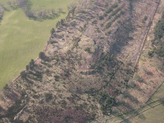 Oblique aerial view of Ogle Hill, looking NW.