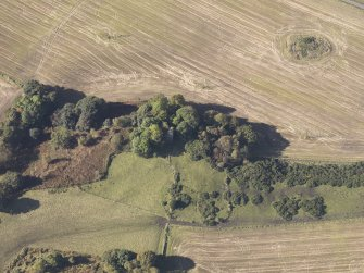 Oblique aerial view of Bruce's Castle, taken from the ENE.