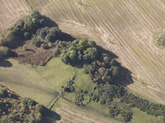 Oblique aerial view of Bruce's Castle, taken from the NE.