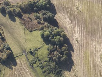 Oblique aerial view of Bruce's Castle, taken from the N.
