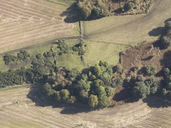 Oblique aerial view of Bruce's Castle, taken from the W.