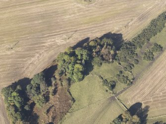 Oblique aerial view of Bruce's Castle, taken from the SE.