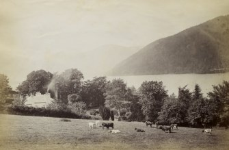 View of a herd of cattle in a field situated in the foreground, with Kenmore manse visible behind and with Loch Tay in the background, Kenmore, Perth.  PHOTOGRAPH ALBUM No. 187, (cf PAs 186 and 188) Rev. J.B. MacKenzie of Colonsay Albums,1870, vol.2.