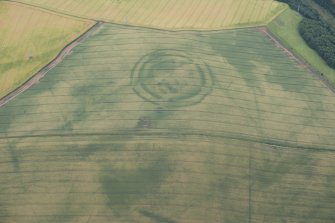 Oblique aerial view of the cropmarks of the fort at The Chesters, Spott, looking SW.
