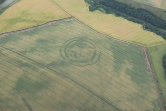 Oblique aerial view of the cropmarks of the fort at The Chesters, Spott, looking S.