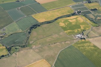 Oblique aerial view of the cropmarks of the possible ring-ditches, round houses and rig, looking SSE.