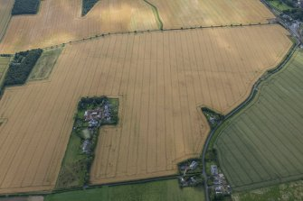 Oblique aerial view of the cropmarks of the round house and the pit defined boundaries, looking W.