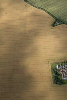 Oblique aerial view of the cropmarks of the round house and the pit defined boundary, looking NNW.