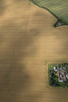 Oblique aerial view of the cropmarks of the round house and the pit defined boundary, looking N.