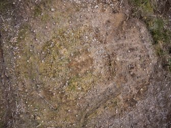 Pre-evaluation aerial photograph by Ed Martin, north east direction is up, Comar Wood Dun, Cannich, Strathglass