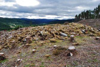 Outside wall spread on the north side of the site, Comar Wood Dun, Cannich, Strathglass