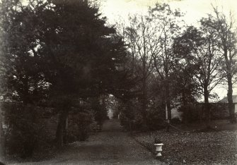 View of avenue, The Peel, Busby from NW
