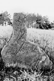 View of symbol stone lying against railings of burial enclosure. Original negative captioned: 'Sculptured Stone at Fetterangus Churchyard 1908'.