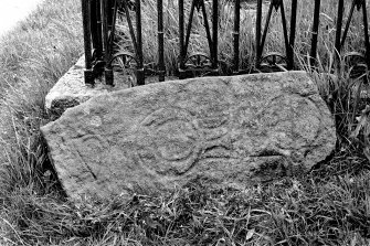 View of broken symbol stone. Original negative captioned: 'Sculptured Stone at Logiemar near Tarland 1904'. (Incorrect image attached - Fetterangus NJ95SE4 - to be corrected).