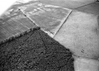 Oblique aerial view centred on the cropmarks of the Roman Temporary Camp at Normandykes, looking to the NE.