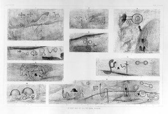 Details of Pictish symbols and other carvings in Dovecot Cave. Plate 35 from J Stuart, The Sculptured Stones of Scotland, volume ii.