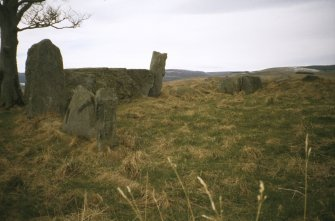 Copy of colour slide (H 93809cs) of Old Keig recumbent stone circle, viewed from E looking SW.