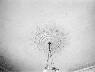 Interior. Detail of plaster ceiling.