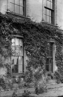 Culross Abbey Mansion House. Detail of clematis on rear wall of house. Scanned from glass plate negative. Original envelope annotated by Erskine Beveridge 'Clematis Culross Abbey 1896'