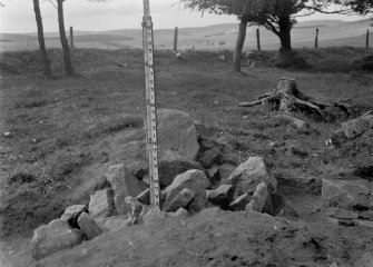 Remnants of the perimeter of the cairn on the NE side of the ring, as viewed from the SE