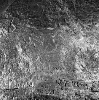 Incised horses on SW wall, King's Cave, Arran.