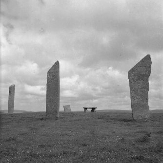 Stones of Stenness - general view of the monoliths.
