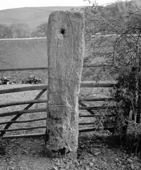 View of Borthwick symbol stone