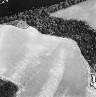 Oblique aerial view centred on the cropmarks of the enclosure and grange with the ruins of the burial ground and church adjacent, taken from the SW.