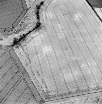 Oblique aerial view of Grange of Aberbothrie centred on the cropmarks of a possible round-house, and a possible souterrain within an enclosure, taken from the ESE.