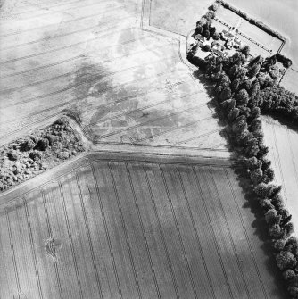 Oblique aerial view centred on the cropmarks with the house adjacent, taken from the WNW.