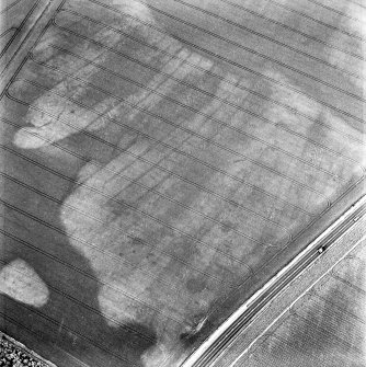 Balcathie, oblique aerial view, taken from the SSW, centred on the cropmarks of several ring-ditches and pit features, and showing further cropmarks including those of an enclosure in the top left-hand corner of the photograph.