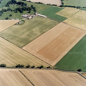 Oblique aerial view centred on the cropmarks of the cursus monuments, and the barrows, pits and rig with the farmsteading adjacent, taken from the WNW.