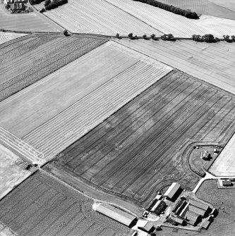Oblique aerial view centred on the cropmarks of the cursus monuments, and the barrows, pits and rig with the farmsteading adjacent, taken from the ESE.