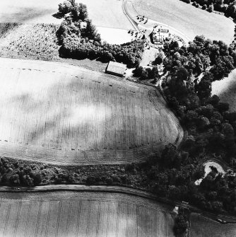 Linthill, oblique aerial view taken from the NW, centred on the cropmarks of an enclosure and rig.