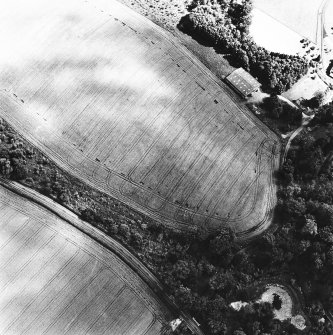 Linthill, oblique aerial view taken from the W, centred on the cropmarks of an enclosure and rig.