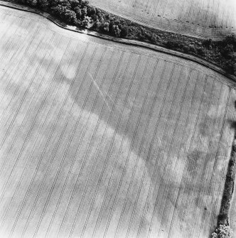 Linthill, oblique aerial view, taken from the NE, centred on linear cropmarks.