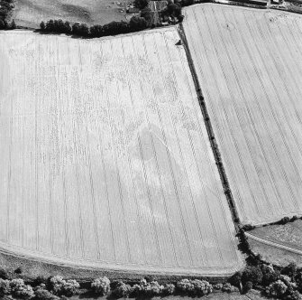 Oblique aerial view of Phantassie centred on the cropmarks of an enclosure, possible ring-ditch, rig and linear cropmarks with a dovecot adjacent, taken from the NNW.