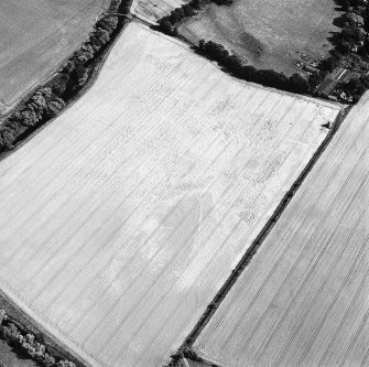 Oblique aerial view of Phantassie centred on the cropmarks of an enclosure, possible ring-ditch, rig and linear cropmarks with a dovecot adjacent, taken from the WNW.