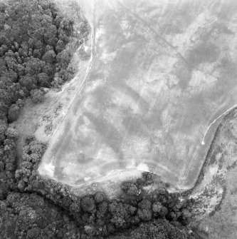 Linthill, fort and linear cropmarks: oblique air photograph of cropmarks.
