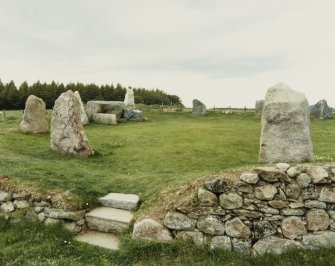 Easter Aquhorthies Stone Circle, General Views