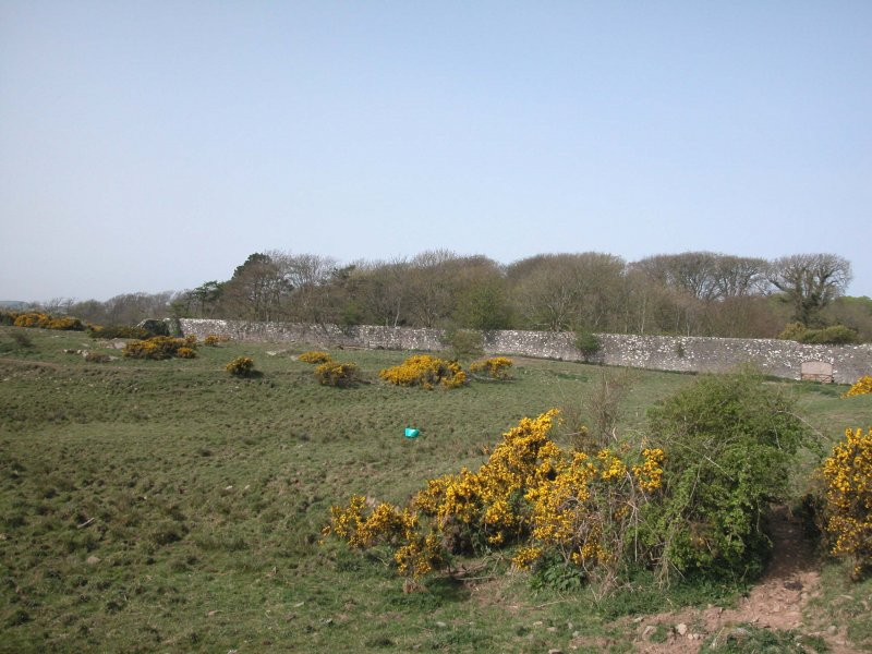 View of walled Garden at Balmae from the E