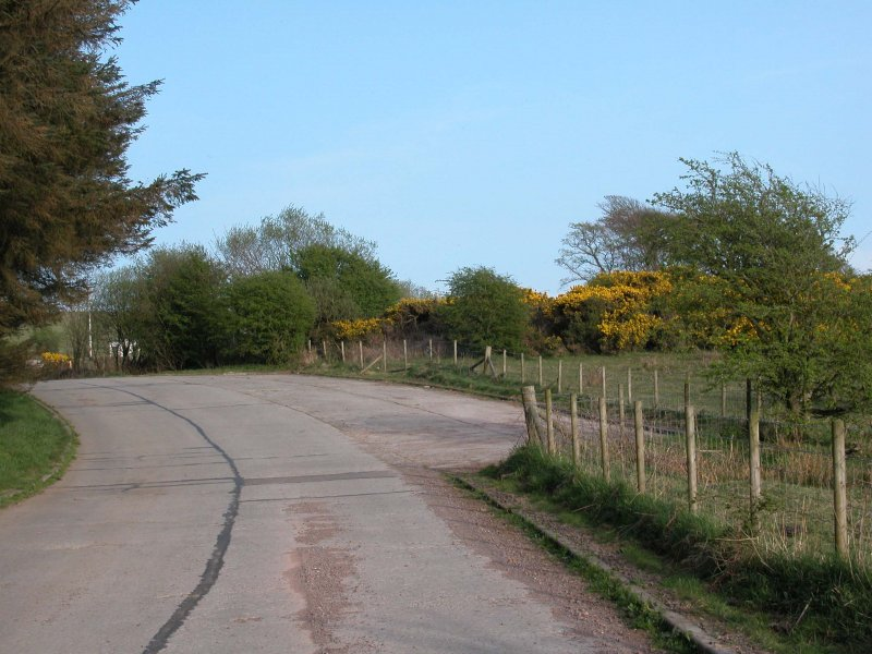 View of layby on tank road from the W