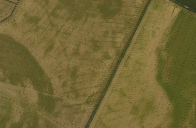 Oblique aerial view of the cropmarks of pit-defined cursus, pits and rig, with pits and macula adjacent, taken from the SW.