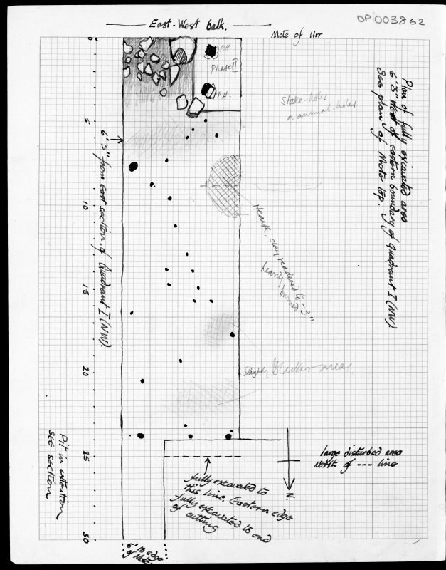 Plan of fully excavated area 6' 3'' West of Eastern boundary of Quadrant I (NW)