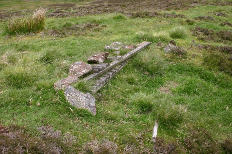 View of slit trench on W side of Woodhouselee Hill (NT 2317 6521), taken from S