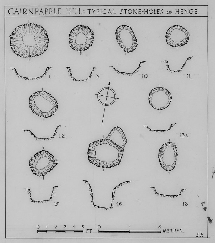 Plans and section drawings of typical stone-holes of Henge.