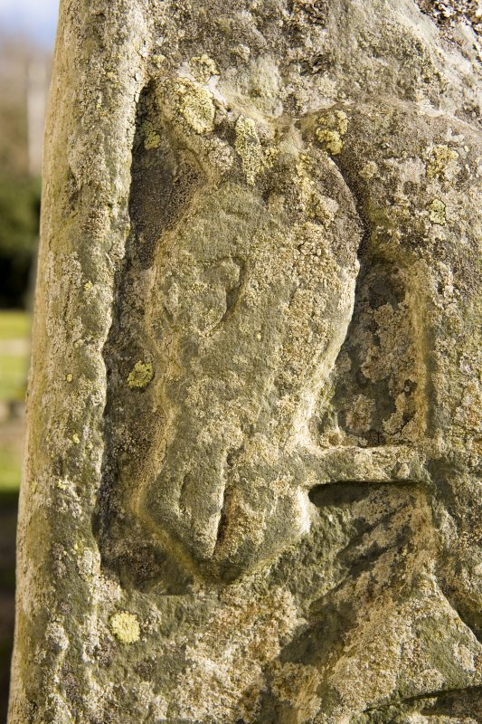 Churchyard. Pictish cross slab. NW Face. Detail.