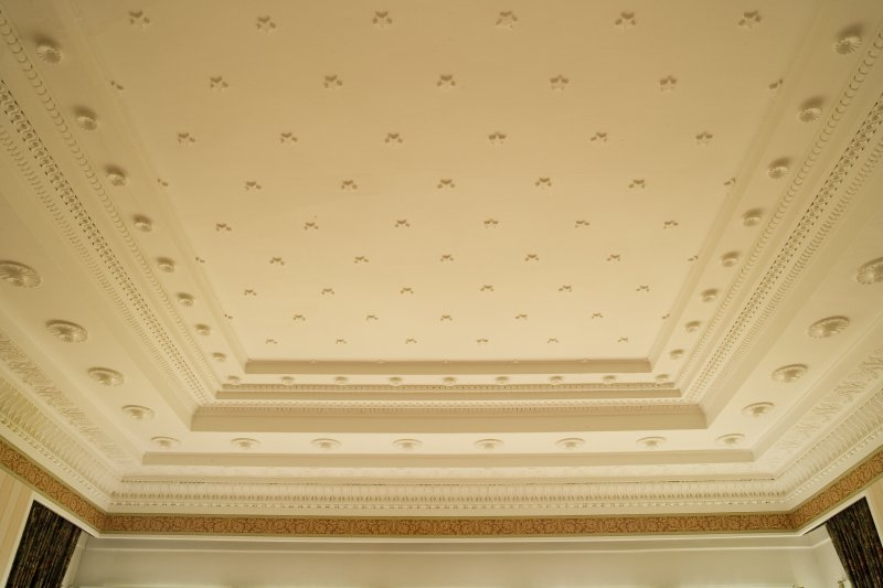 Interior. 1st floor, drawing room ceiling