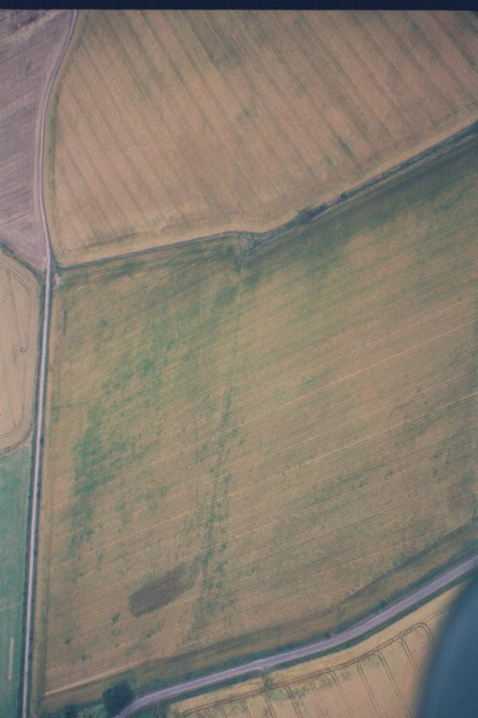 Oblique aerial view of East side of Dunning temporary Roman camp, from E (aircraft at c.NO 032 145).  Crop mark in foreground is old field boundary.