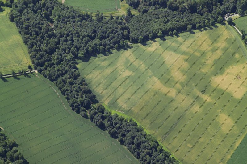 Oblique aerial view centred on the cropmarks of the ring-ditch and barrows with the remains of the stone adjacent, taken from the E.